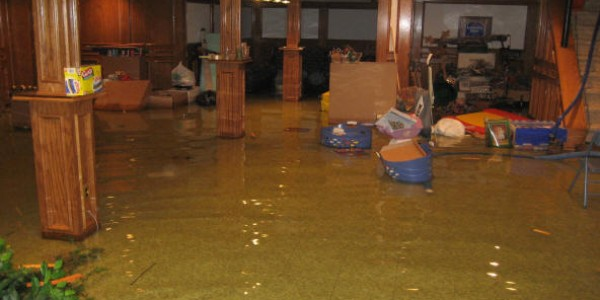 Water Damage San Diego Green Carpet Cleaning